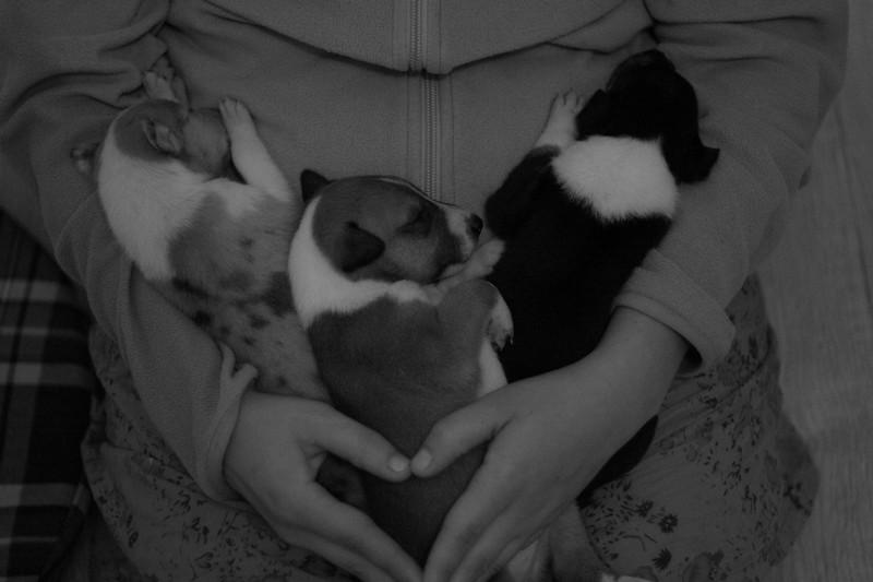 Des moments de rêve en compagnie de Norma, Ira et Alf