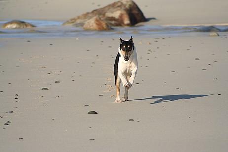 Sveva à la plage